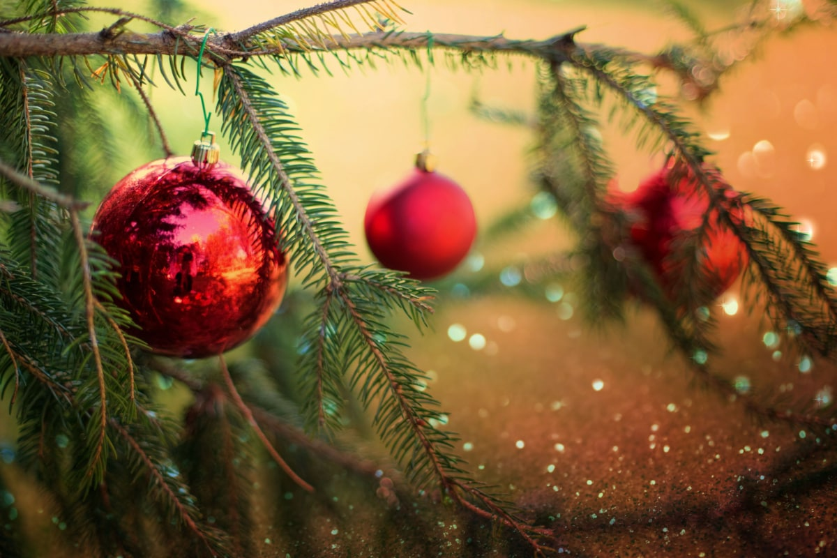 Hours for Christmas and New Year Holidays